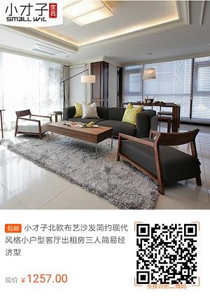 小才子北欧现代简约风格小户型布艺沙发